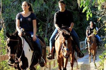 A&A Adventure Horse Trail Rides